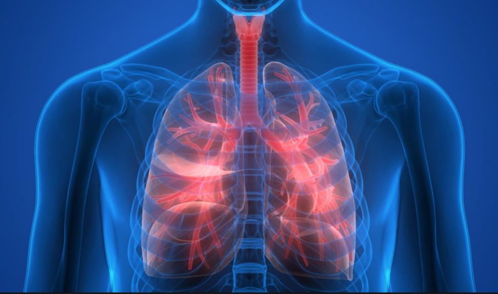 Wie Die Atmung Dein Training Beeinflusst Der Fit Blog